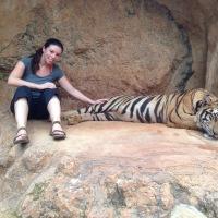 Kanchanaburi: Tiger Temples
