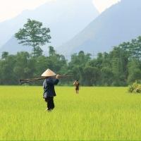 Vietnam: Where to stay