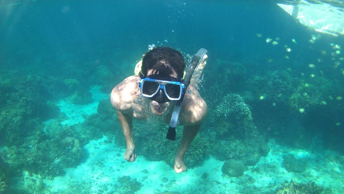 Snorkelling in Malapascua